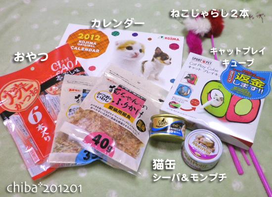 chiba12-01-29.jpg