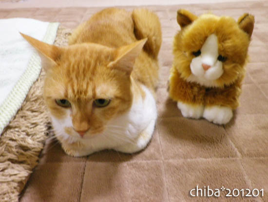 chiba12-01-34.jpg
