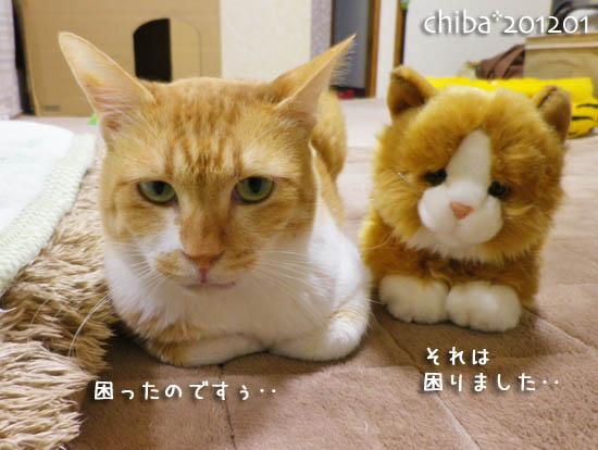chiba12-01-37.jpg