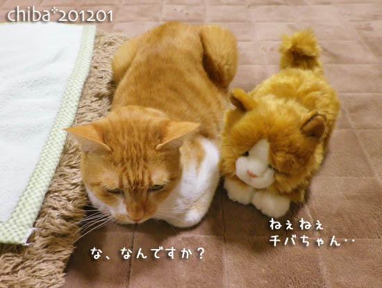 chiba12-01-40.jpg