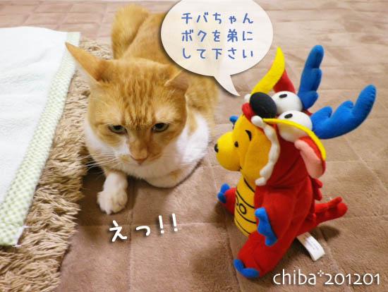 chiba12-01-43.jpg