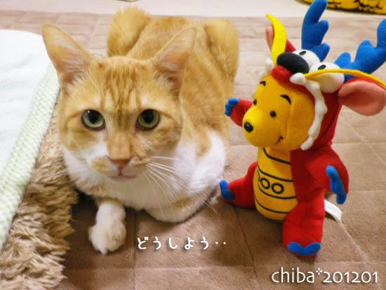 chiba12-01-44.jpg