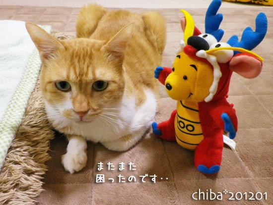 chiba12-01-45.jpg