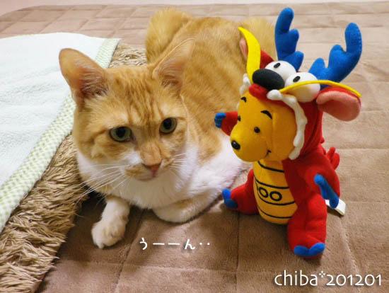 chiba12-01-47.jpg