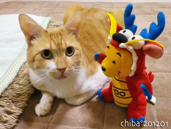 chiba12-01-48.jpg