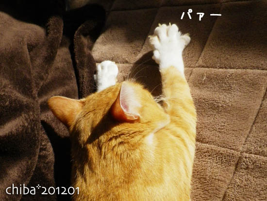 chiba12-01-58.jpg