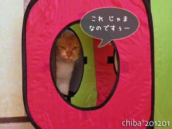 chiba12-01-85.jpg