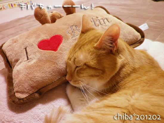 chiba12-02-28x.jpg