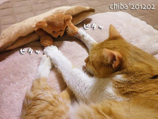chiba12-02-32.jpg