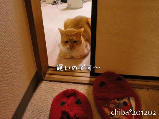 chiba12-02-5.jpg