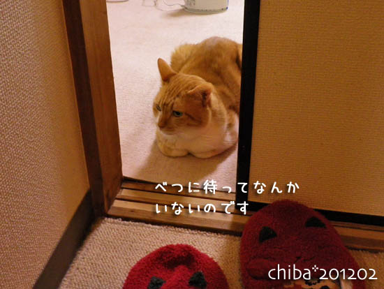 chiba12-02-6.jpg