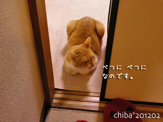 chiba12-02-7.jpg