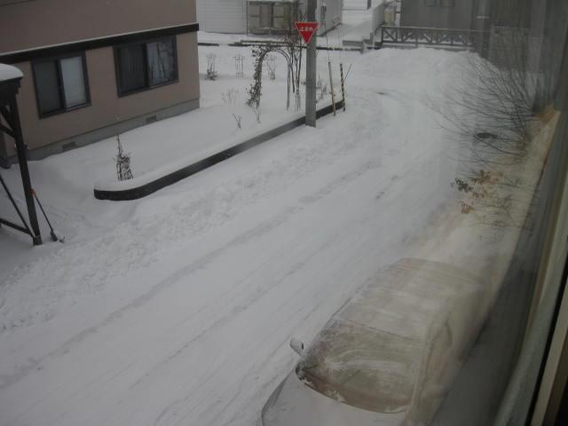 201212・・・雪