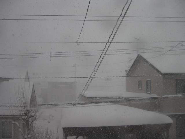 降雪中・・・