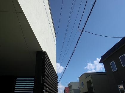 CIMG1295.jpg