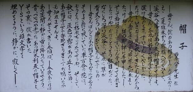 mugiwarabousi3.jpg