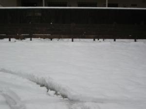 雪と宙結び2