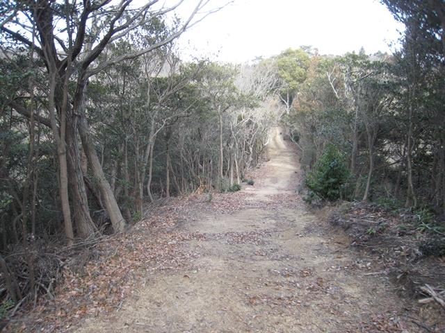 さぬきの森森林浴公園
