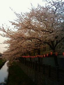 Reiko no yukue-200904080902000.jpg