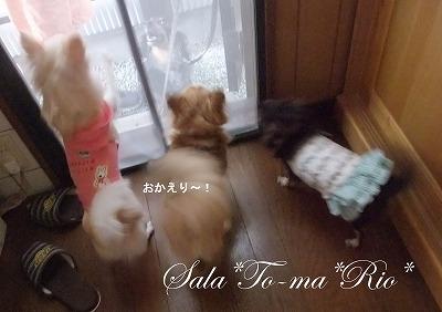 2011-09-10-12.jpg