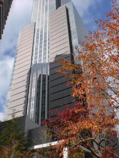 2011年11月25日_大安食堂仙台トラストシティ店・店舗