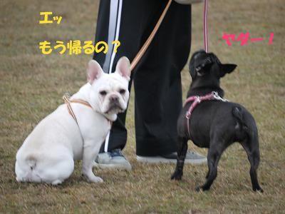 kiji_24_3_10_ramutomomo3.jpg