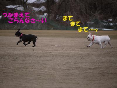 kiji_24_3_24_ramutomomo3.jpg
