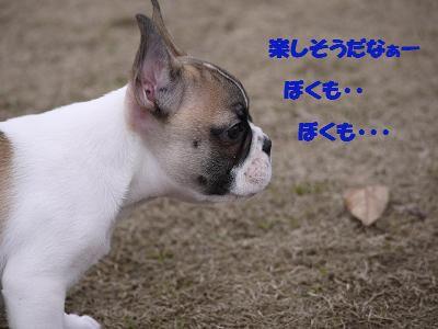 kiji_24_3_24_reo2.jpg