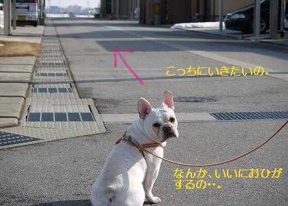 kiji_24_3_4_ramu2.jpg