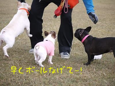 kiji_24_4_15_ramutomomotoreo3.jpg