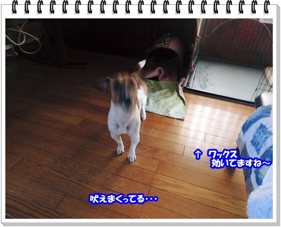 1387ブログNo2