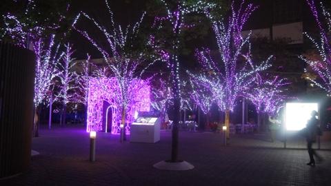 後楽園 東京ドームシティ イルミネーション