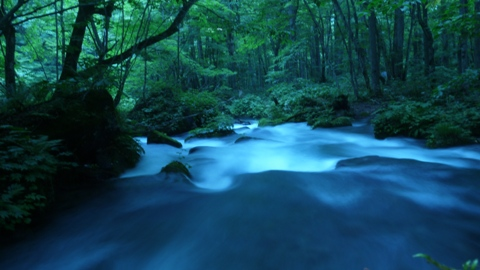 奥入瀬渓流 低速シャッター撮影