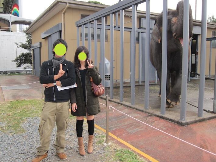 象と一緒に