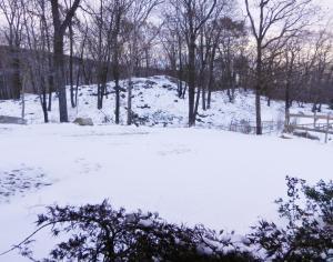 11月初めに大雪
