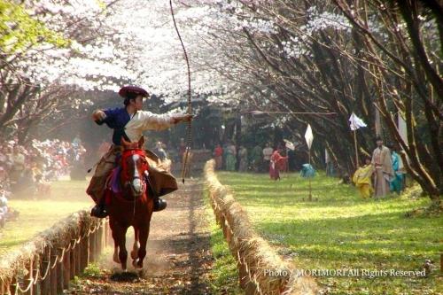 0903_yabusame01.jpg