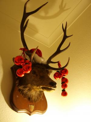 Christmas2011 8