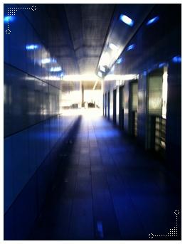 青い高架下