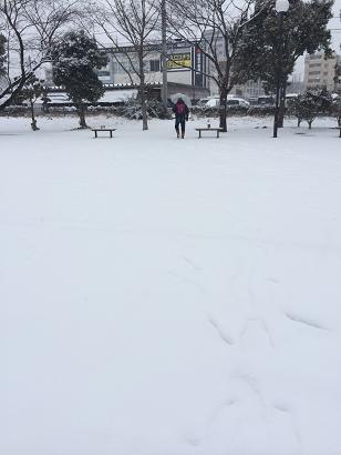 駅前の雪2