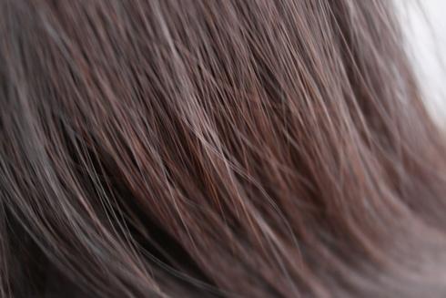 ルプルプ(lplp)白髪用トリートメント エイジレス 美容ブログ