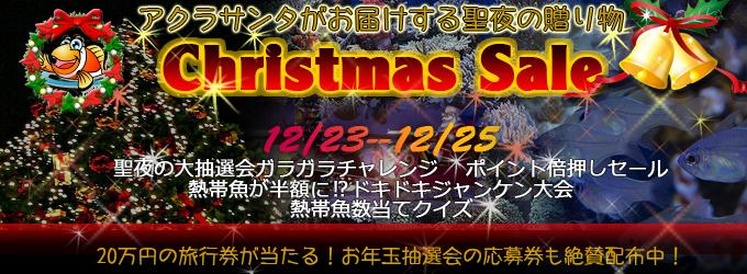 201112christmas_banner680.jpg