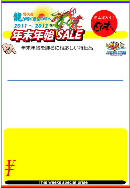 2011E5889DE586ACsaleEFBCA14CS-thumbnail2.jpg
