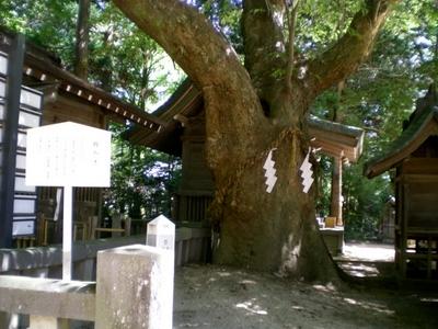穂高神社 (3)
