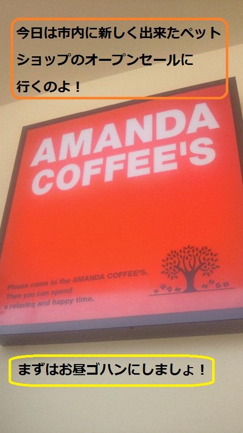アマンダコーヒー