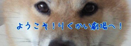 ZAuRo_20111203222247.jpg