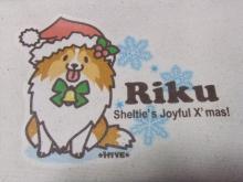 クリスマスりく【りぼん】