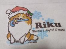 クリスマスりく【ステッキ】