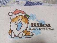 クリスマスりく【くつした】
