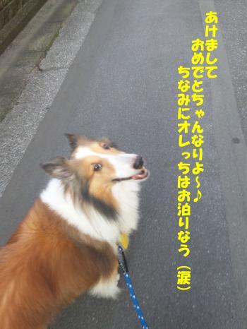あけおめ~★2012