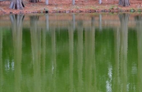 201202_5449.jpg